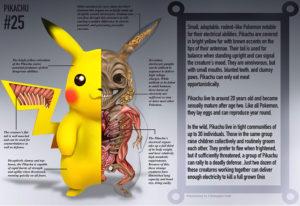 pikachu anatomy